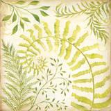Fern Botanical II