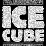 Ice Cube  Center Stage