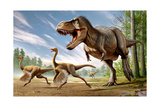 Tyrannosaurus Rex Attacking Two Struthiomimus Dinosaurs