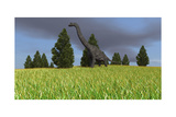 Large Brachiosaurus in an Open Field