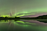 Aurora Borealis over Fish Lake  Whitehorse  Yukon  Canada