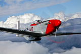 A P-51D Mustang in Flight Near Hollister  California