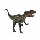 Allosaurus  a Prehistoric Era Dinosaur