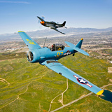 A T-6 Texan and P-51D Mustang in Flight over Chino  California