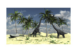 Two Brachiosaurus Dinosaurs Grazing on Trees