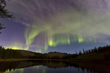 Aurora Borealis over Hidden Lake  Yukon  Canada