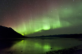 Aurora Borealis over Kluane Lake  Yukon  Canada