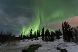Aurora Borealis over Creek  Yukon  Canada