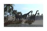 Three Brachiosaurus Dinosaurs Grazing