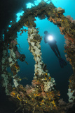 A Diver Explores the Mawali Shipwreck  Lembeh Strait  Indonesia