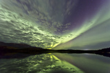 Aurora Borealis over Schwatka Lake  Yukon  Canada
