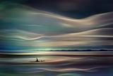 Orques Papier Photo par Ursula Abresch