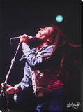 Bob Marley: Sings