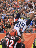 NFL Playoffs 2014: Jan 5  2014 - Bengals vs Chargers - Ladarius Green