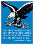 Bald Eagle - The History of Liberty - Woodrow Wilson
