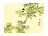 Flowers and Birds Picture Album by Bairei No4