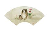 Puppy Fan