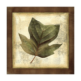 Rustic Leaves III - No Crackle