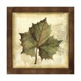 Rustic Leaves I - No Crackle