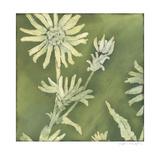 Verdigris Blossoms I