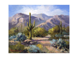 Catalina Mountain Foothills