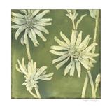 Verdigris Blossoms III