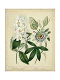 Cottage Florals II Reproduction d'art par Sydenham Teast Edwards