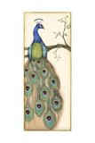 Small Rebecca's Peacock I