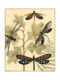 Small Graphic Dragonflies I