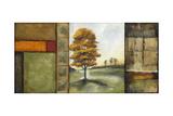 Autumnal Impressions II
