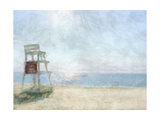 Beach Lookout I