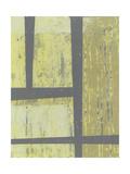 Zest Abstract II