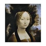 Ginevra De Benci  C 1474-1478