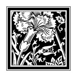B&W Graphic Floral Motif I