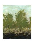 Meadow Abstract II