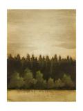 Treeline Sunset II