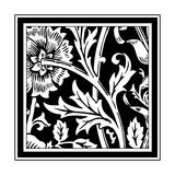 B&W Graphic Floral Motif IV