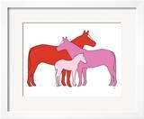 Pink Herd