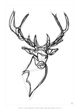 Royal Stag Deer