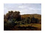 Grove (Monasterio De Piedra)  Ca 1856