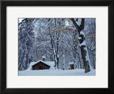 Log Cabin in Snowy Woods  Chippewa County  Michigan  USA