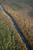Ocala National Forest  Part of the Florida Wildlife Corridor Area