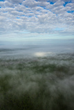 Aerial Photograph of Ocala National Forest  Florida Wildlife Corridor Area