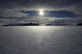 Sea Ice in Moonlight/ Illuminated by the Midnight Sunlight