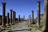 Columned Street  2nd Century AD  Basalt - Syria  Bosra