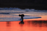 A Boy Washes Off a Clam He Found on the Beach at Sunset