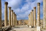 Ruins of Church of Saint Theodore  496  Jerash  Jordan