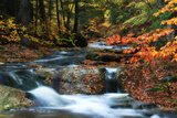 Fall Colors Surround a Roaring Waterfall in a Forest Stream
