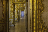 Ornate Gilded Relief Sculpture in the Catherine Palace  Summer Residence of the Russian Tsars