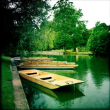Punts Moored by River Bank  Cambridge  Cambridgeshire  Uk